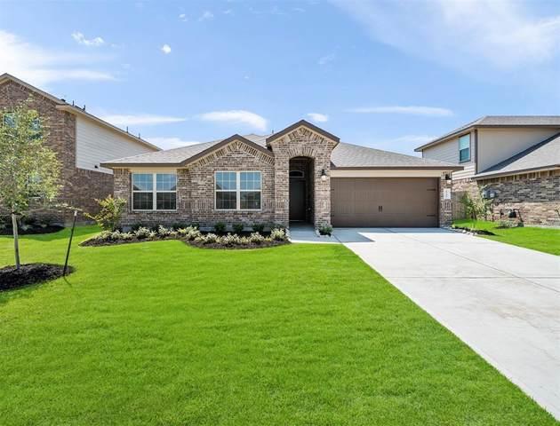 1343 Palmer Crest, Missouri City, TX 77459 (MLS #16133360) :: Christy Buck Team