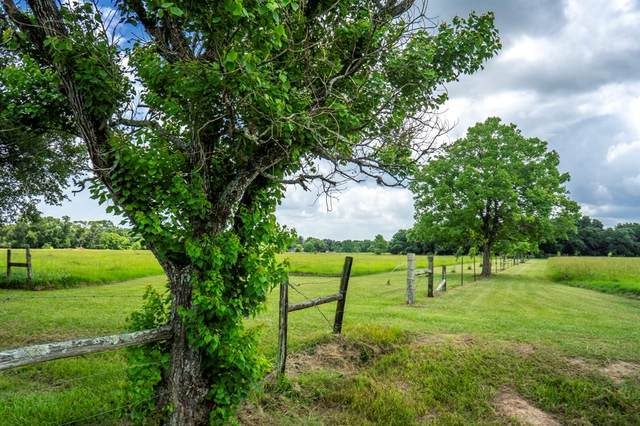3573 Cr 106, Rock Island, TX 77470 (MLS #16250641) :: All Cities USA Realty