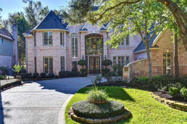 14 Shearwater Place, The Woodlands, TX 77381 (MLS #16261658) :: Krueger Real Estate