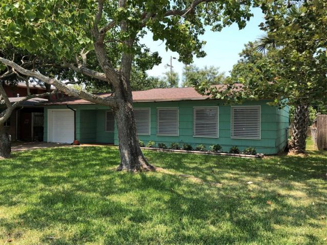 126 Bonita Avenue, Galveston, TX 77550 (MLS #16429425) :: Texas Home Shop Realty
