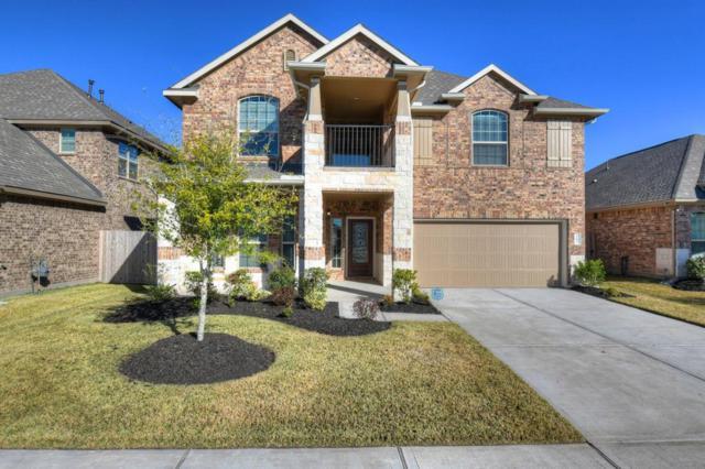 17022 Audrey Arbor Way, Richmond, TX 77407 (MLS #16723197) :: The Heyl Group at Keller Williams