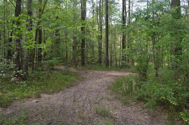 0 Royal Creek Road, Conroe, TX 77303 (MLS #17082531) :: Giorgi Real Estate Group
