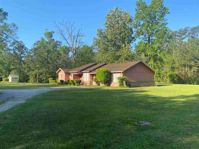 3975 Havel Lane, Vidor, TX 77662 (#17149750) :: ORO Realty