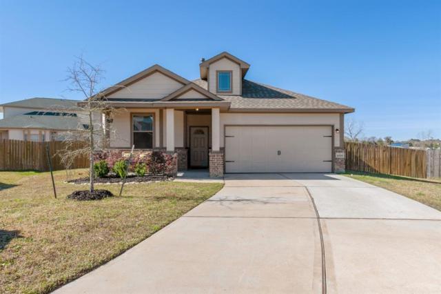 18701 Rosalea Way, Montgomery, TX 77356 (MLS #17297996) :: The Heyl Group at Keller Williams