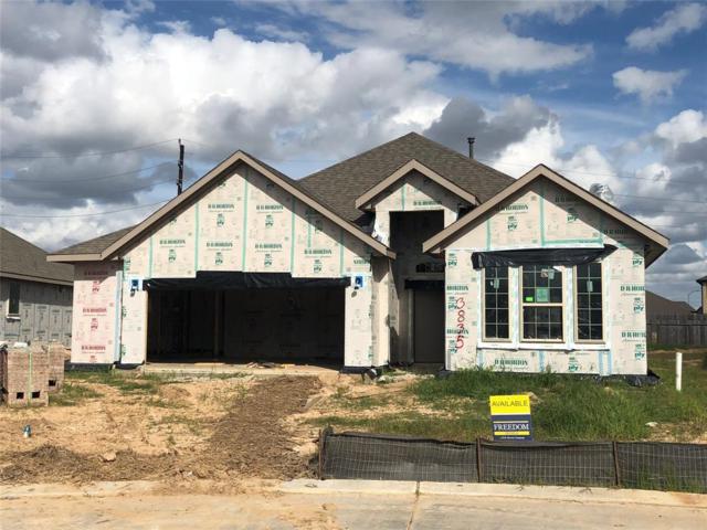 3835 Keatings Lagoon, Katy, TX 77494 (MLS #17552563) :: Texas Home Shop Realty