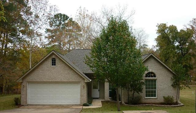 2023 E Lake Drive, Huntsville, TX 77340 (MLS #17647769) :: The Sansone Group