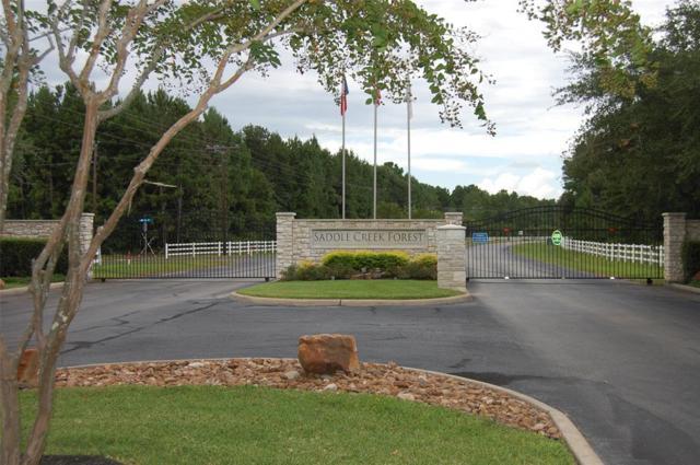 7709 Pony Court Court, Waller, TX 77484 (MLS #17982452) :: The Parodi Team at Realty Associates