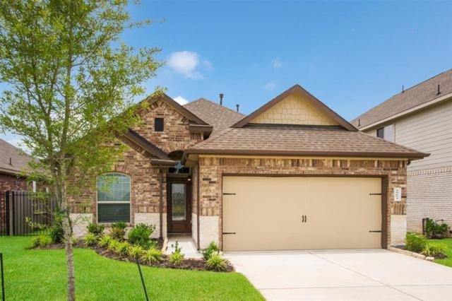 29654 Yaupon Shore, Spring, TX 77386 (MLS #18655443) :: Rachel Lee Realtor