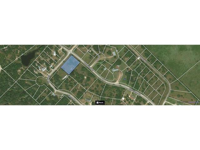 lot 19 Westridge, Brenham, TX 77833 (MLS #19014946) :: Texas Home Shop Realty