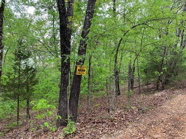 100 Old Ccc Road, Other, AR 72542 (MLS #19190573) :: Michele Harmon Team