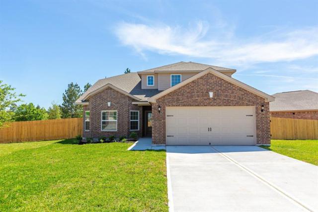 7670 Dragon Pearls Lane, Conroe, TX 77304 (MLS #20180198) :: Giorgi Real Estate Group
