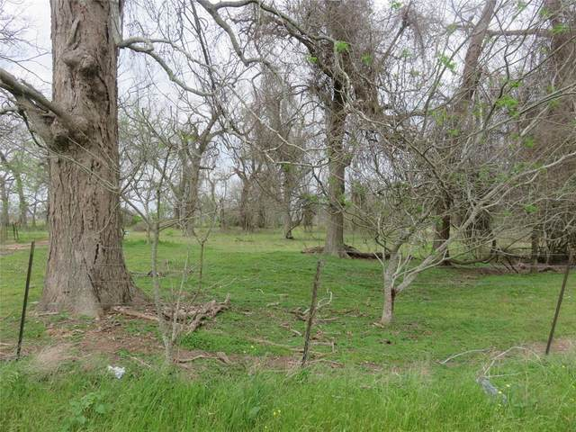 0 County Rd 269, Elm Grove, TX 77434 (MLS #21589790) :: Lerner Realty Solutions