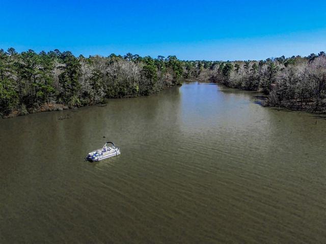 0001 Hidden Cove, Point Blank, TX 77364 (MLS #21888184) :: Texas Home Shop Realty