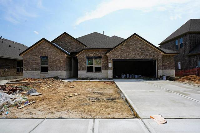 1318 Elkins Hollow Lane, League City, TX 77573 (MLS #21974746) :: REMAX Space Center - The Bly Team