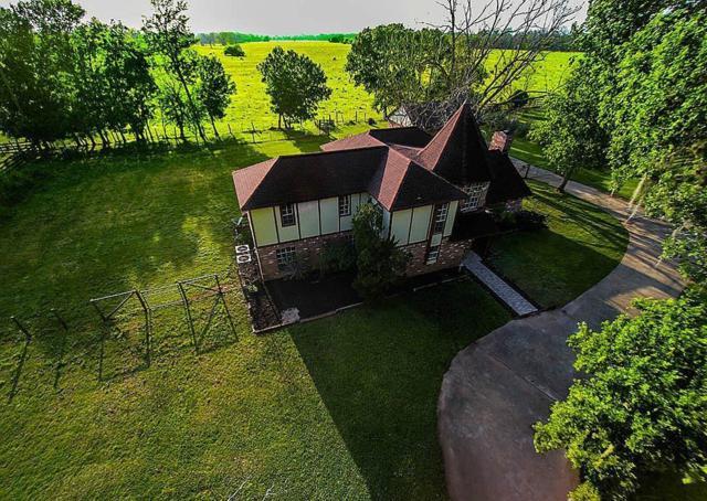1135 Pony Lane, Wallis, TX 77485 (MLS #2239216) :: Texas Home Shop Realty