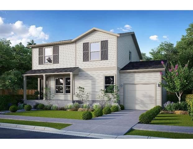 8313 Crestwood Dr, Texas City, TX 77591 (MLS #23123321) :: Homemax Properties