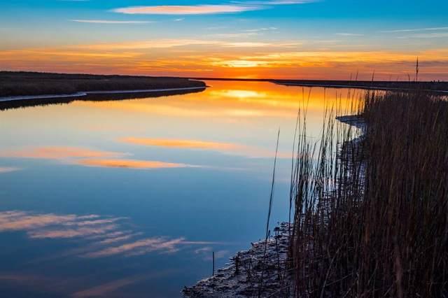 27 Windswept Drive, Port Lavaca, TX 77979 (MLS #23638769) :: Michele Harmon Team
