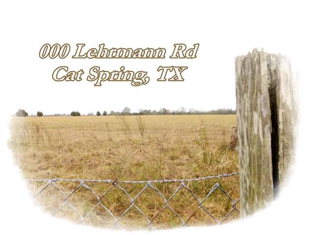 000 Lehrmann Road, Cat Spring, TX 78933 (MLS #24174101) :: Texas Home Shop Realty