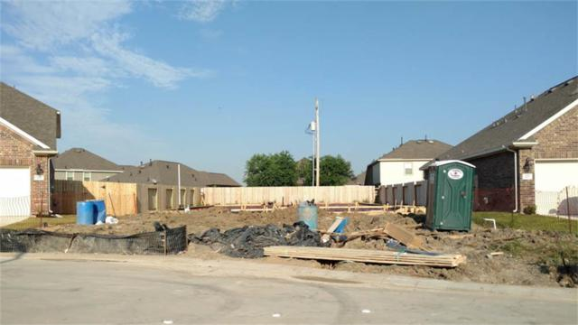 203 Brookwood Park, Dickinson, TX 77539 (MLS #24370254) :: Texas Home Shop Realty