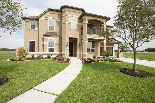 1217 Feather Glen Lane, Friendswood, TX 77546 (MLS #24762813) :: REMAX Space Center - The Bly Team