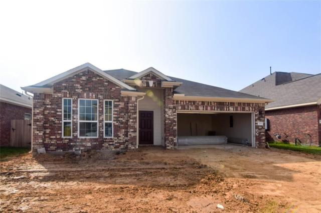 20015 Wedgewood Gable Way, Katy, TX 77449 (MLS #25025351) :: Connect Realty