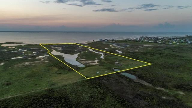 24024 San Luis Pass Road, Galveston, TX 77554 (MLS #25479840) :: Fairwater Westmont Real Estate