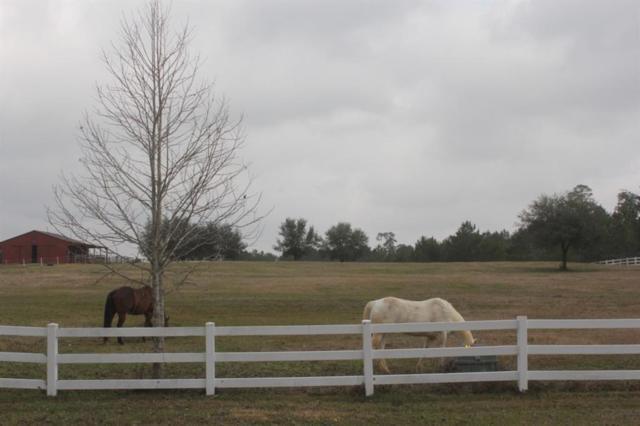 8776 Grand Lake Estates Drive, Montgomery, TX 77316 (MLS #26007724) :: Fairwater Westmont Real Estate