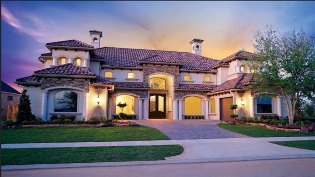 7338 Palmetto Springs Trail, Katy, TX 77493 (MLS #2664261) :: Texas Home Shop Realty
