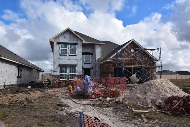 10315 Ritter Run Drive, Rosharon, TX 77583 (MLS #27138702) :: Connect Realty