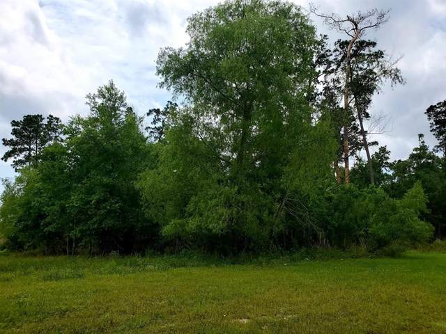 97 Kings Lake Estates Boulevard, Humble, TX 77346 (MLS #27857497) :: Michele Harmon Team