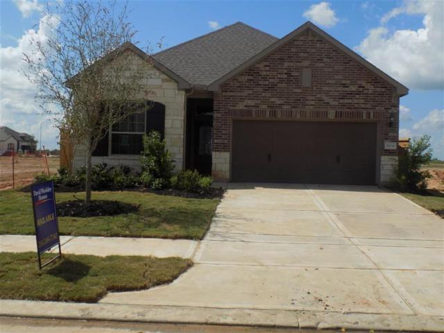 30319 Aster Brook, Fulshear, TX 77423 (MLS #28106368) :: The Heyl Group at Keller Williams