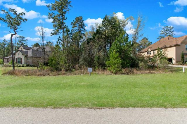 27829 Quiet Sky Place Drive, Spring, TX 77386 (MLS #2821206) :: Caskey Realty