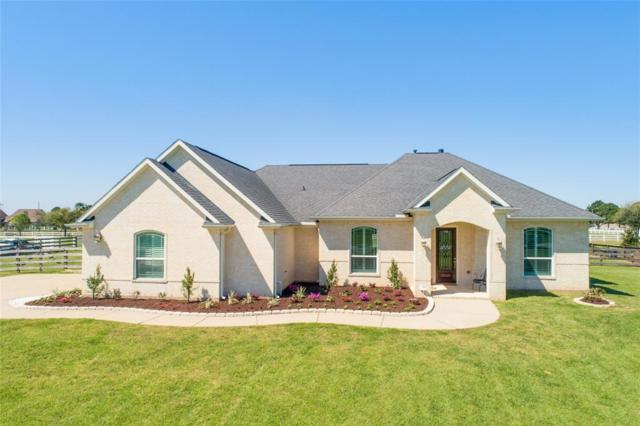 4635 Silhouette Drive, Katy, TX 77493 (MLS #28644216) :: Texas Home Shop Realty