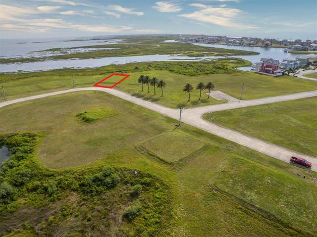 3827 Curlew Drive, Galveston, TX 77554 (MLS #28799467) :: Lerner Realty Solutions