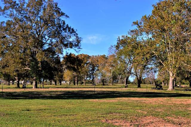 000000 Texasgulf Avenue, Boling, TX 77420 (MLS #29077481) :: Connell Team with Better Homes and Gardens, Gary Greene