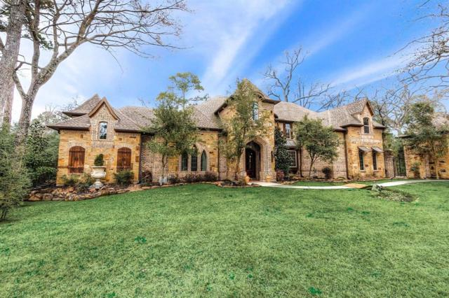 19110 Timberlake View Lane, Tomball, TX 77377 (MLS #30340663) :: Texas Home Shop Realty
