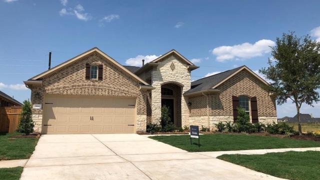 28810 Rising Moon Lane, Fulshear, TX 77441 (MLS #30516447) :: The Jill Smith Team