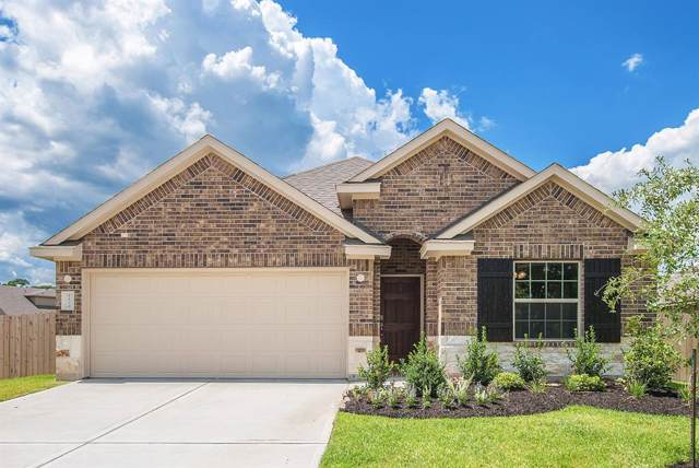 8815 Vasco Da Gama Trace, Houston, TX 77044 (MLS #30523287) :: Giorgi Real Estate Group