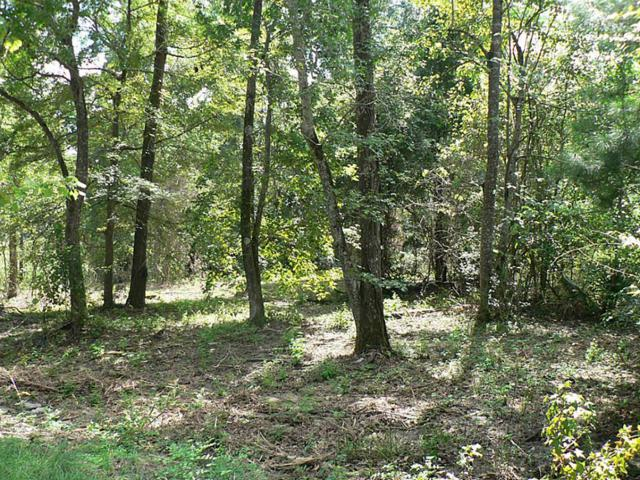 Lot 19 Tom Sawyer, Willis, TX 77318 (MLS #30612747) :: Texas Home Shop Realty