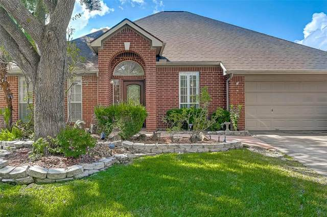 23242 Willow Canyon Drive, Katy, TX 77494 (MLS #30704052) :: Connect Realty