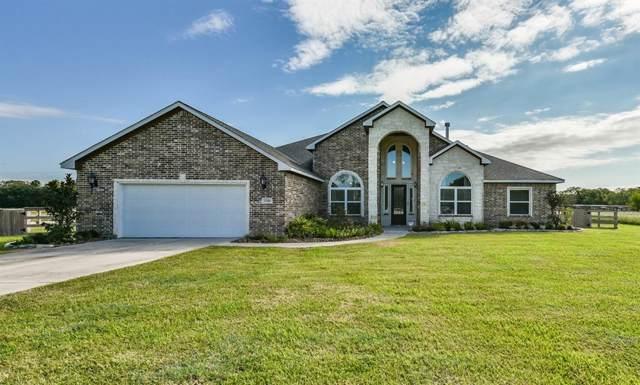 1338 Lakeland Circle, Rosharon, TX 77583 (MLS #31284033) :: The Jill Smith Team