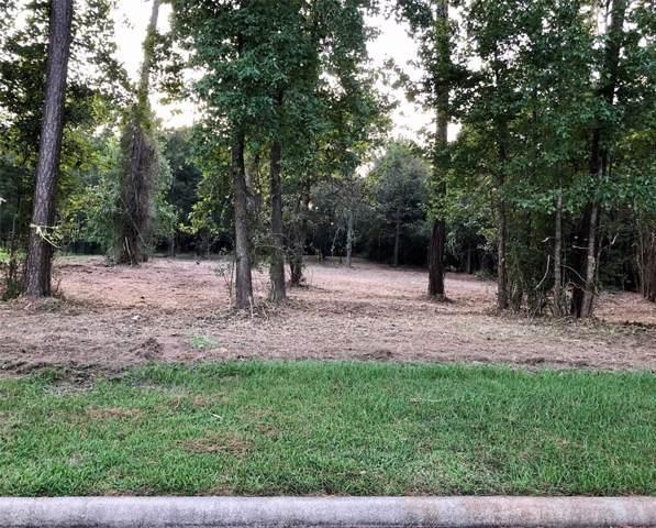 12745 Aries Loop, Willis, TX 77318 (MLS #32279316) :: The Home Branch