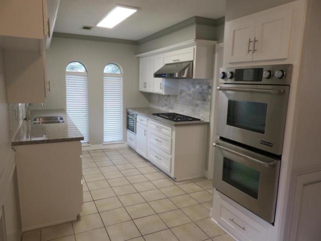21210 Park Tree Lane, Katy, TX 77450 (MLS #32300337) :: Texas Home Shop Realty