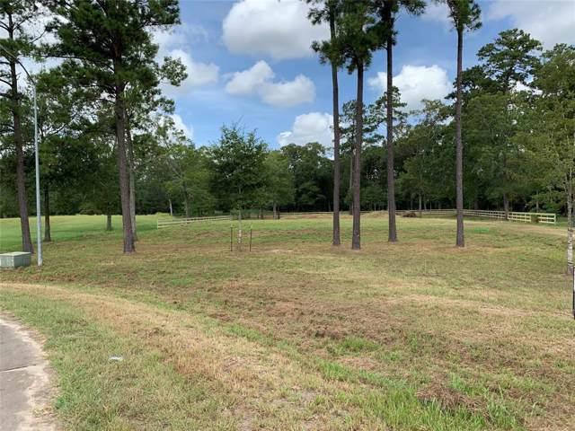 7334 Bayou Timbers Drive, Alvin, TX 77511 (MLS #33255006) :: KJ Realty Group