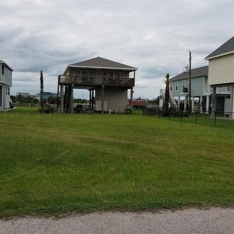 Lot 127 Camino, Galveston, TX 77554 (MLS #34124822) :: My BCS Home Real Estate Group