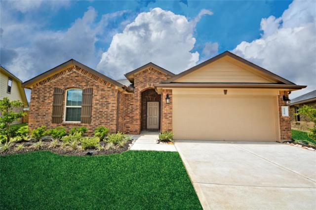 2226 Tannin Trace, Fresno, TX 77545 (MLS #3416796) :: The SOLD by George Team
