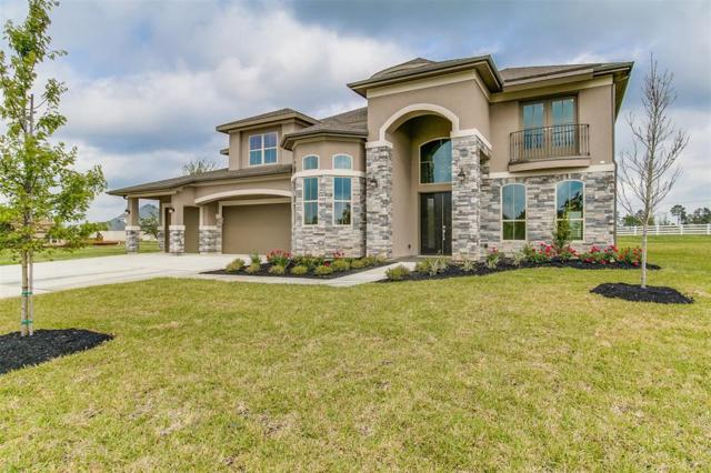 12042 White Oak Ranch Drive, Conroe, TX 77304 (MLS #34850158) :: Texas Home Shop Realty