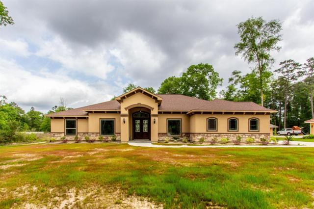 19499 Balsas Drive, Porter, TX 77365 (MLS #35196665) :: The Home Branch