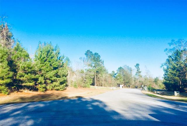 26126 Upper Beacon Place, Montgomery, TX 77316 (MLS #35350517) :: Magnolia Realty