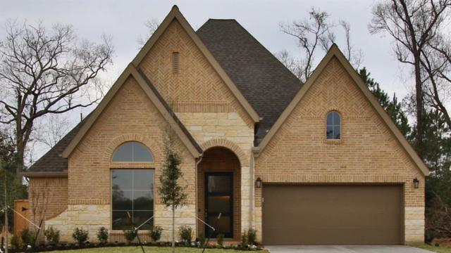23637 Sage Villa Drive, New Caney, TX 77357 (MLS #36149756) :: Green Residential